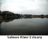 Salmon River Estuary